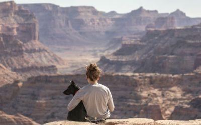 ¿Cómo un animal de compañía puede  facilitar los vínculos, cambiar conductas y llenar el vacío o abandono?